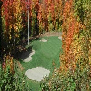 huntsville downs golf & cc