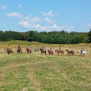 winding fences farm