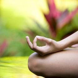 yoga in the sound