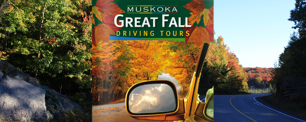 Great Fall Tours