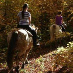 riverside trail rides