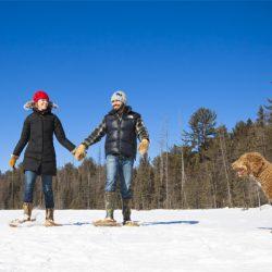 winter romance feature