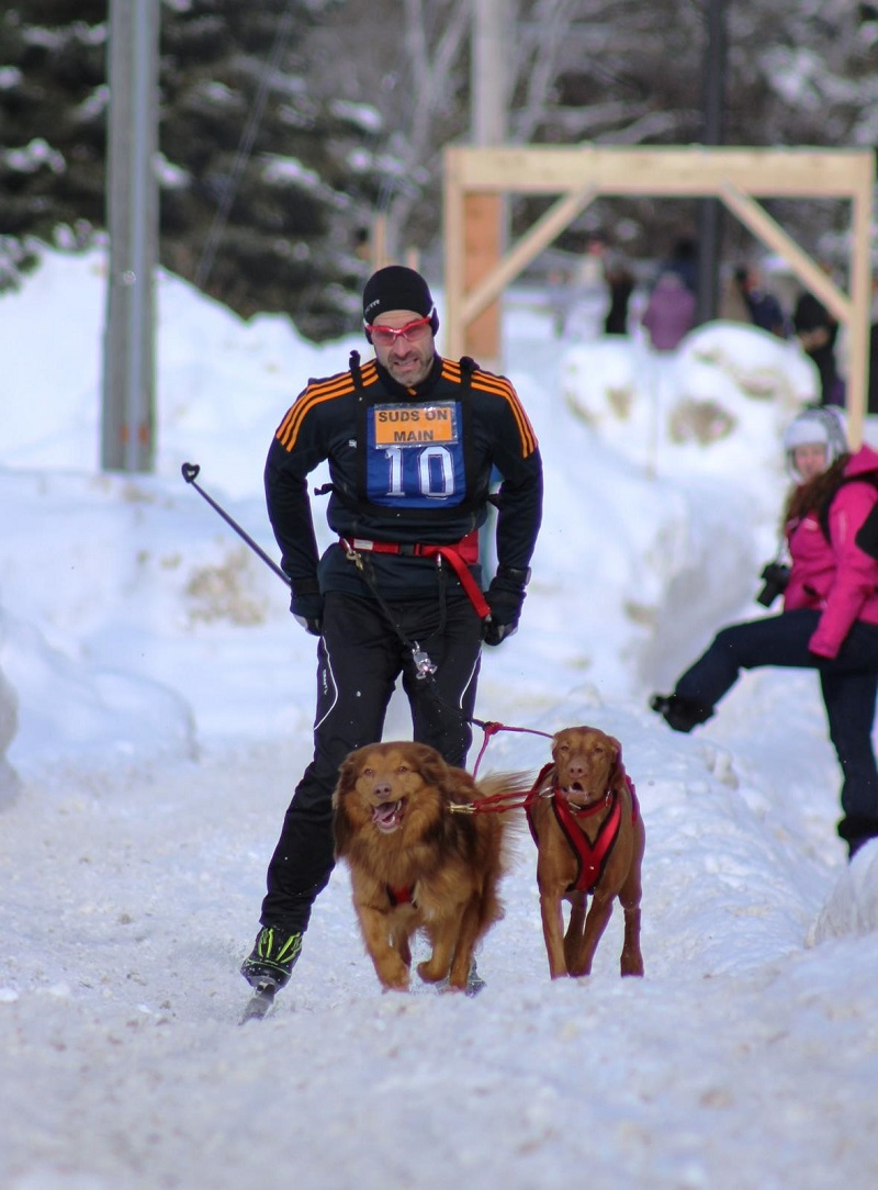 Skijoring with The SportsLab