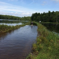 Water crossing resized