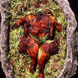 spatchcock chicken Stonemote Cottage