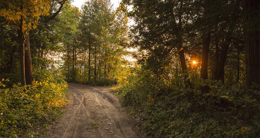 Trail Header Image 2