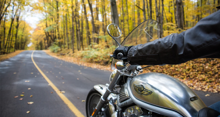 Plan fall drives by car or motorcycle to take in the unbelievable views, to experience Cottage Country's very fine hospitality, and to see something new.